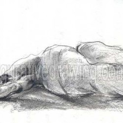 Figurative Drawing-Gallery 2-26